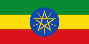 Ethiopie koffiebonen